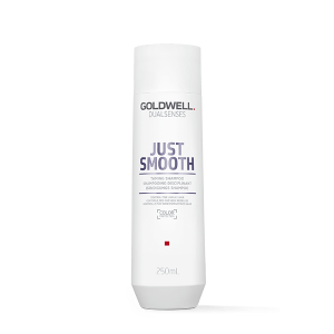 Goldwell Dualsenses Just Smooth Shampoo 100 ml.